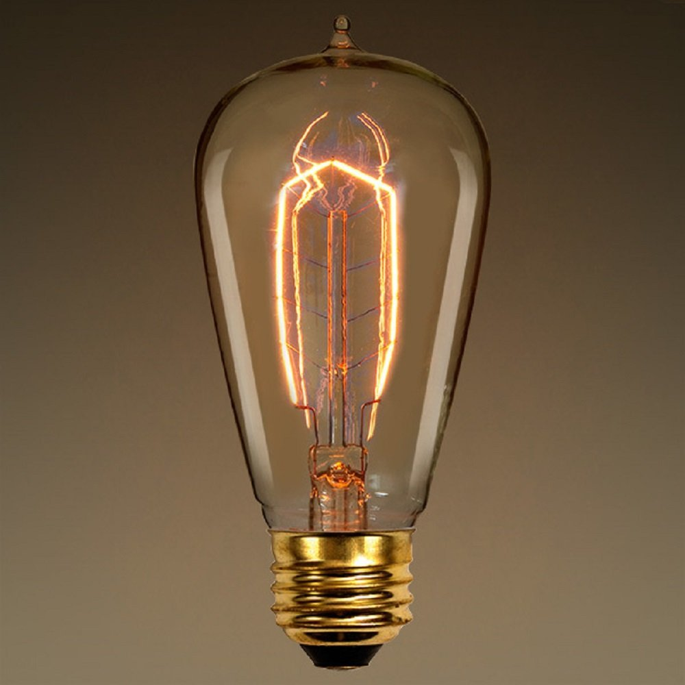 Edison Bulb 40 Watt 5.38 in. Height Vintage Light Bulb Hairpin Filament ST54 120V40W 7AN By PLT