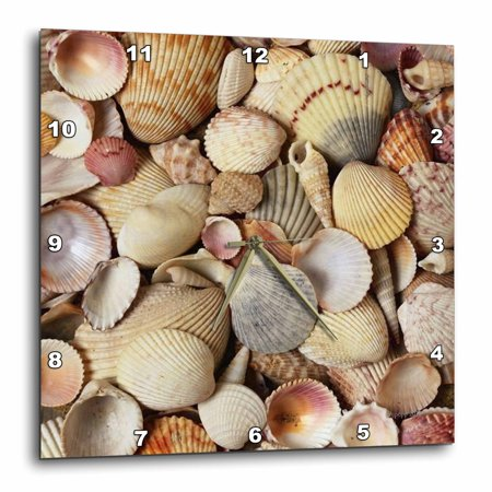 3drose Sea Shells Wall Clock 15 By 15 Inch Walmart Com