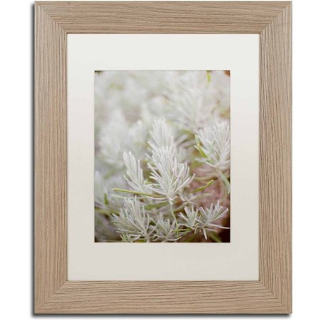 (Trademark Fine Art 'Rosemary Bush' Canvas Art by Ariane Moshayedi, White Matte, Birch Frame)