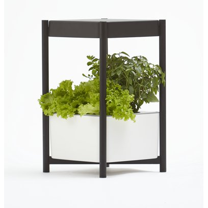 Miracle-Gro Twelve Indoor Growing System with Bluetooth