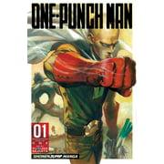 One-Punch Man, Vol. 1 - eBook
