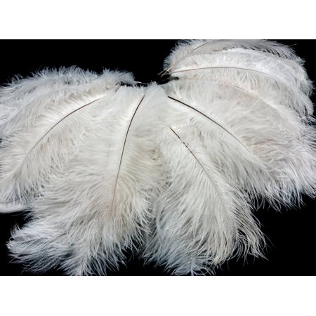 Diy Halloween Bedroom Decorations (Clearance! 12-14inch White Ostrich Feather, Pack of 10 Natural Feathers for DIY Craft Wedding Home Party Decorations, Great Gift for Girls Bedroom and Dorm Room Home Decor, White,)