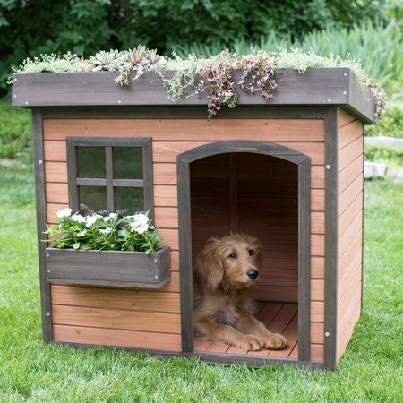 Boomer george lucky green roof dog house for Dog house layouts