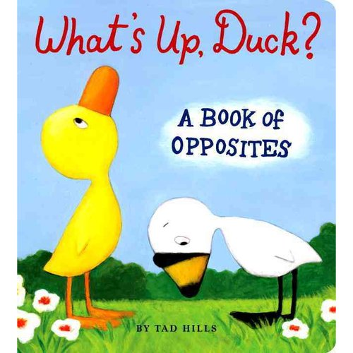 What's Up Duck?: A Book of Opposites