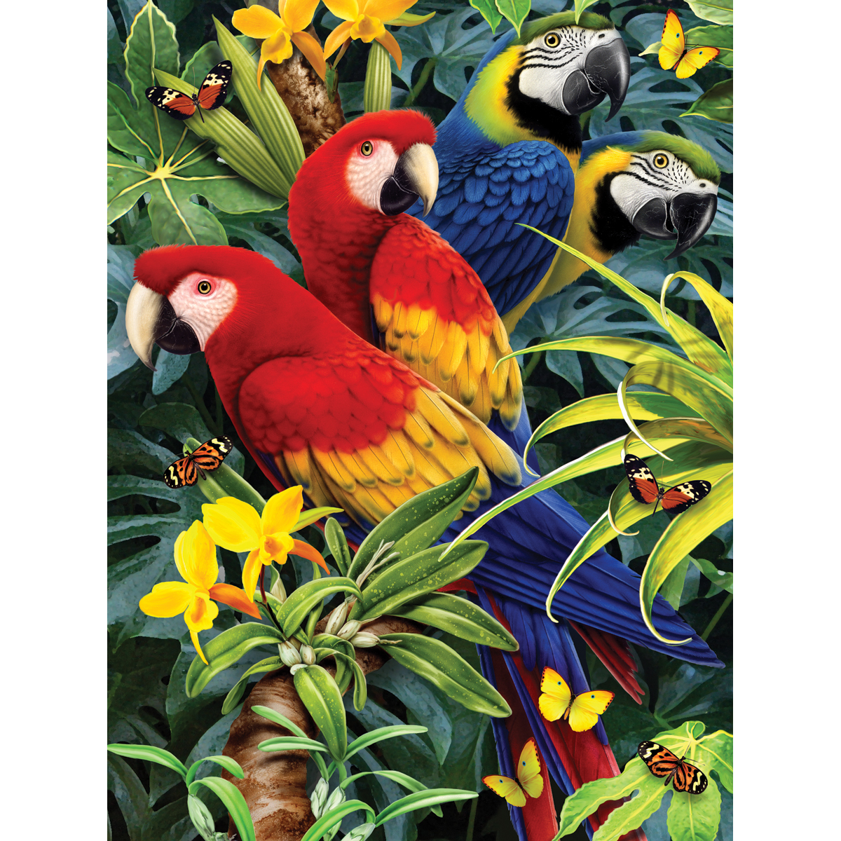 "Junior Small Paint By Number Kit 8.75""X11.75""-Majestic Macaws"