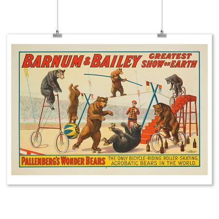 Barnum   Bailey   Pallenbergs Wonder Bears Vintage Poster Usa C  1915  9X12 Art Print  Wall Decor Travel Poster