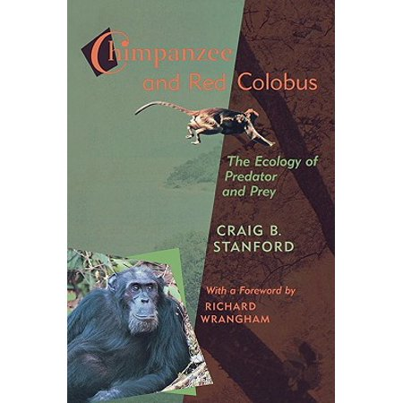 Chimpanzee And Red Colobus The Ecology Of Predator And Prey