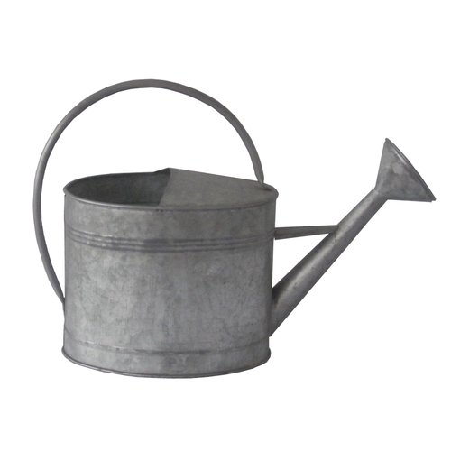 Cheungs Metal Decorative Watering Can by Cheungs Rattan