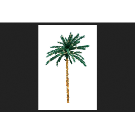 Sienna 6 ft. H Clear Prelit LED Palm Tree 200 lights - Light Up Palm Tree