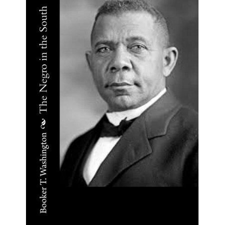 The Negro in the South - image 1 of 1