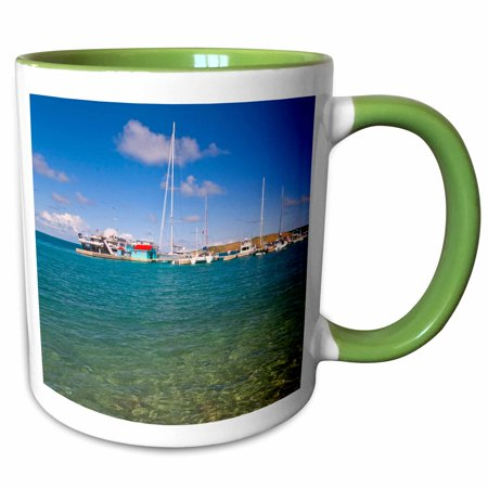 Bay Harbor Marina (3dRose Harbor, Leverick Bay Resort and Marina, BVI-CA10 JRE0003 - Joe Restuccia III - Two Tone Green Mug, 11-ounce)