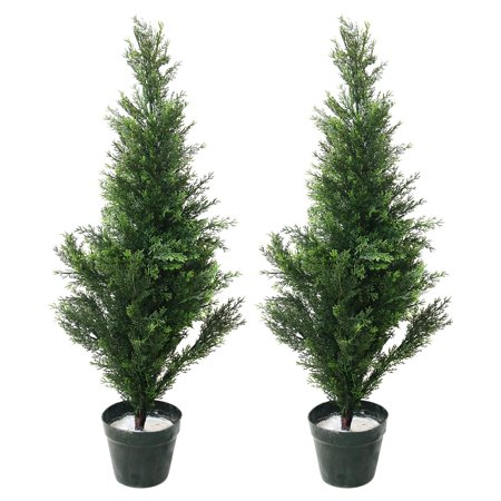 36 in. Romano Topiary Cedar Trees - 2 pc.