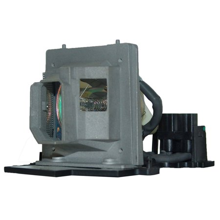 Original Philips Projector Lamp Replacement for Optoma BL-FU200C (Bulb Only) - image 5 de 5