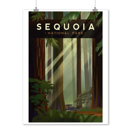 Ball Lithograph - Sequoia National Park, California - Redwood Forest - Geometric Lithograph - Lantern Press Artwork (9x12 Art Print, Wall Decor Travel Poster)