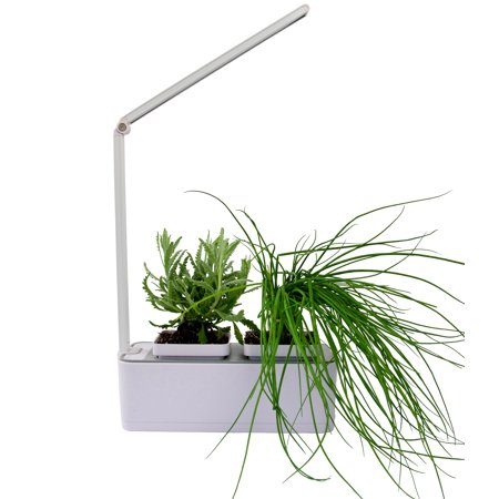 Indoor Herb & Houseplant LED Hydroponic Grow Kit ()