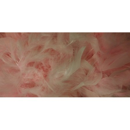 Canvas Print Feathers Pink Costume Scarf Boa Feather Boa Stretched Canvas 10 x 14 (Halloween Costumes Arts And Crafts)