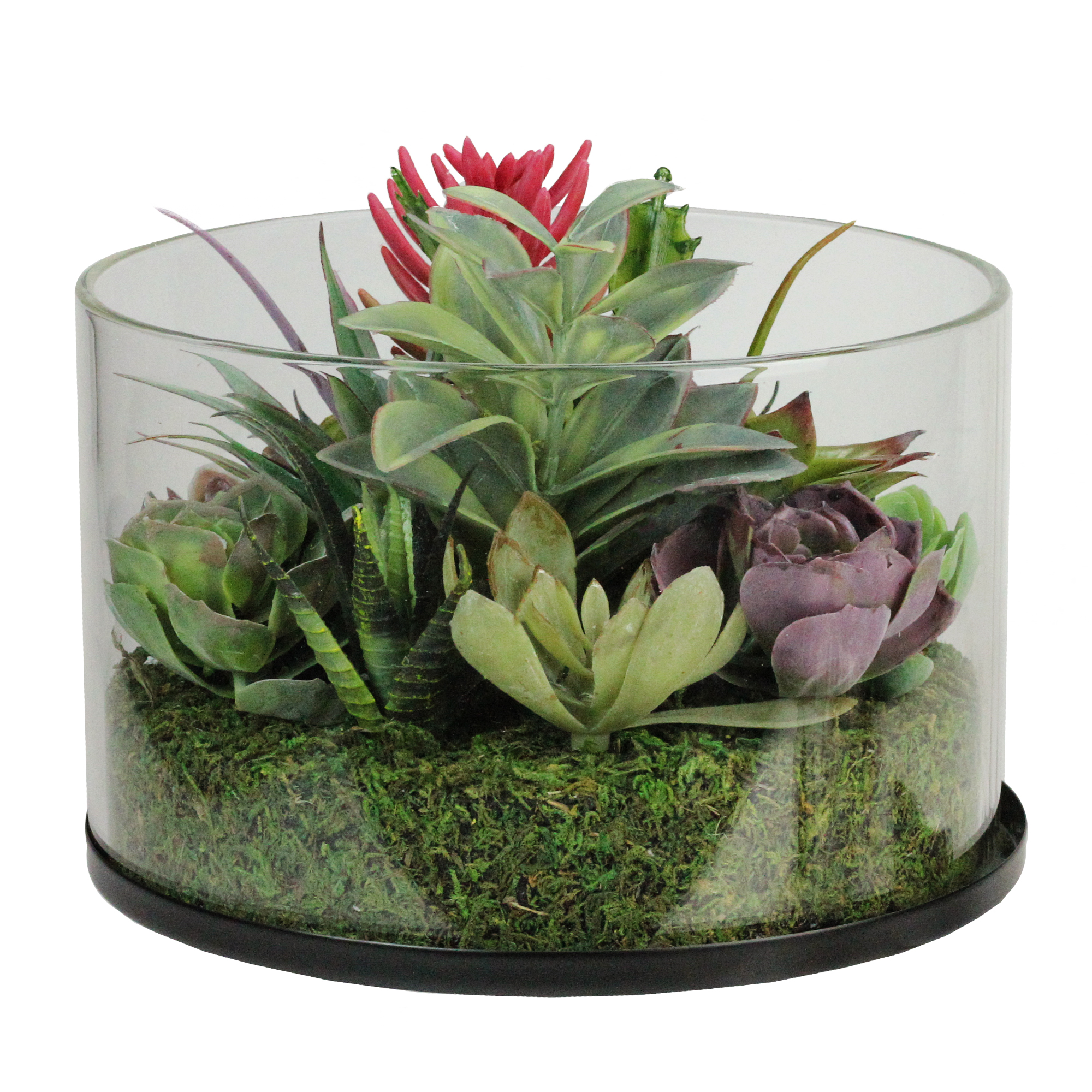 "8"" Artificial Mixed Succulent Arrangement in Round Glass Jar"