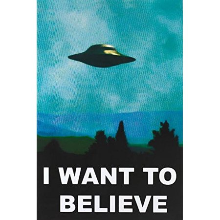(24x36) The X-Files I Want To Believe TV Poster Print - image 1 of 1