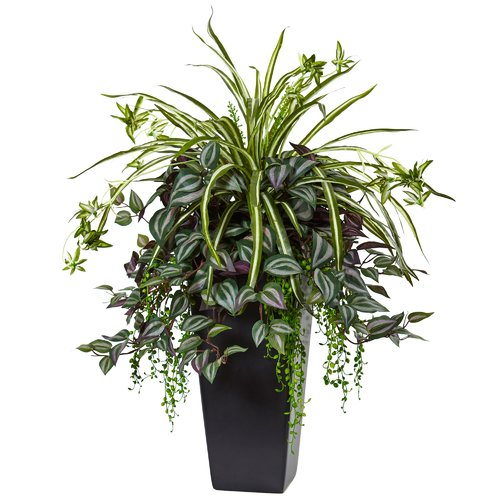 Brayden Studio Wandering Jew and Spider Floor Foliage Pla...