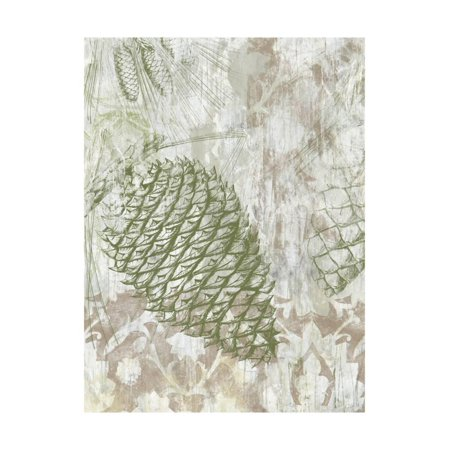 Pinecone Art Projects - Pinecone Fresco I Print Wall Art By June Vess