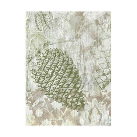 Pinecone Fresco I Print Wall Art By June Vess