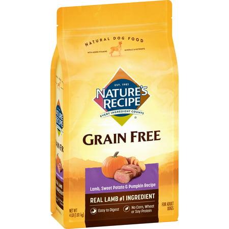 Halloween Food Recipe (Nature's Recipe Grain Free Easy to Digest Lamb, Sweet Potato, & Pumpkin Recipe Dry Dog Food, 4-Pound)