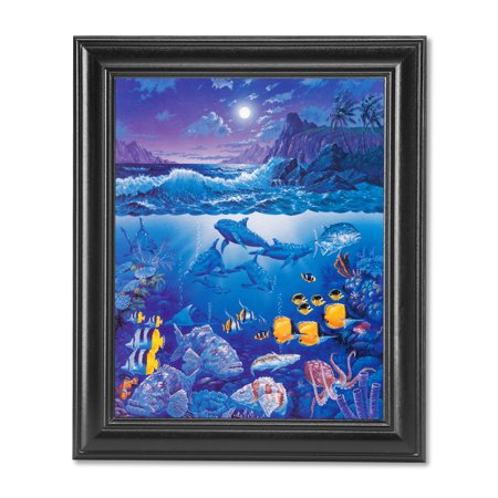 Tropical Bay Ocean Fish Dolphins Shark Coral Reef Wall Picture Black Framed