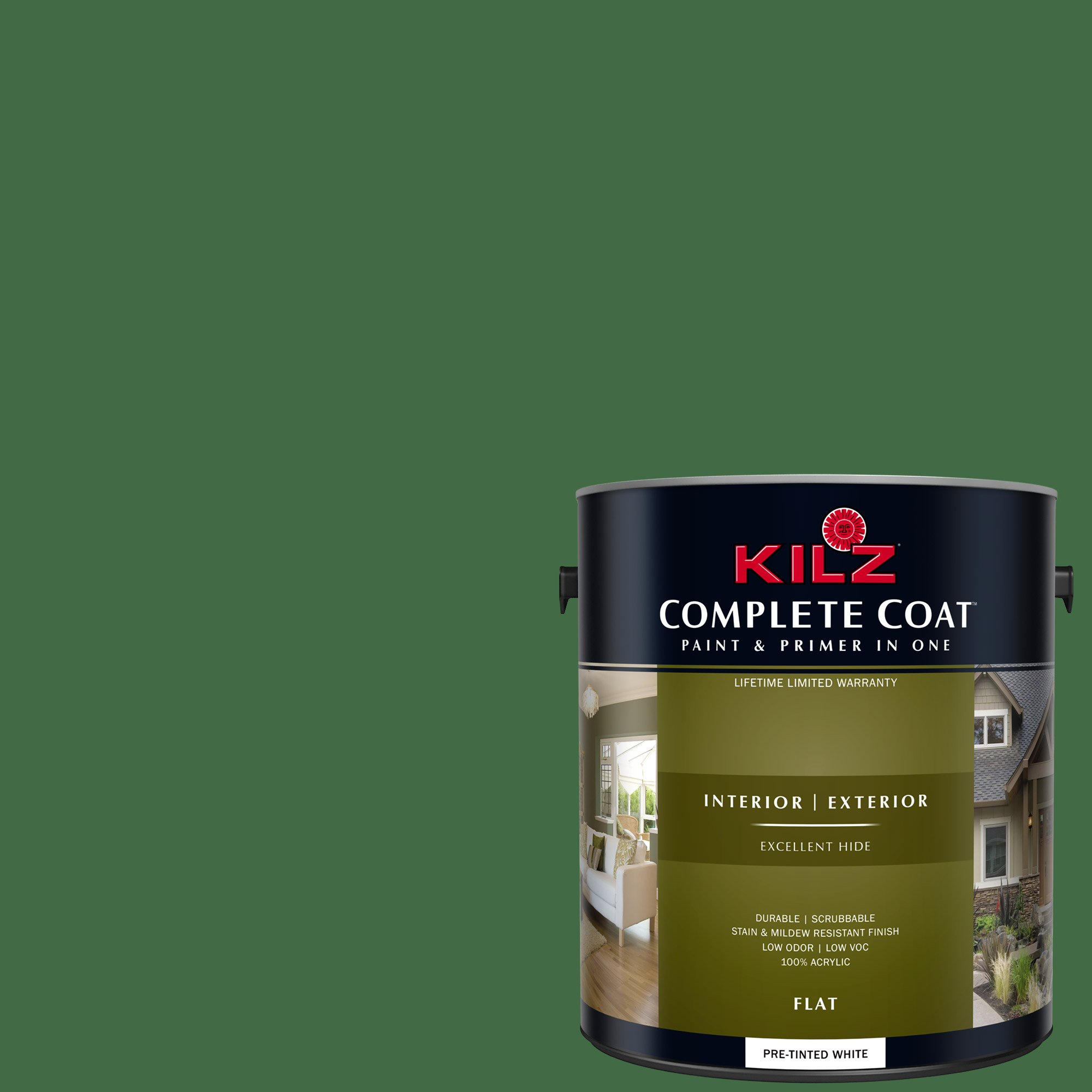 KILZ COMPLETE COAT Interior/Exterior Paint & Primer in One #LG290-02 Flower Leaf