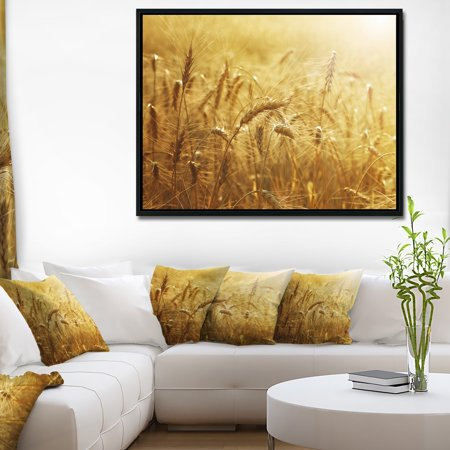DESIGN ART Designart 'Golden Wheat Field' Large Landscape Framed Canvas Art ()