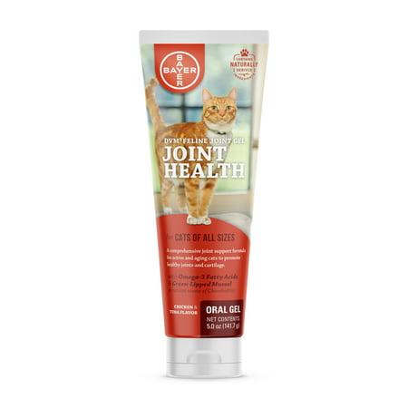 DVM Feline Joint Gel for Cats, 5 oz. (Symptoms Of Feline Leukemia Virus In Cats)