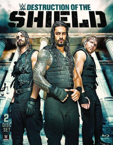WWE: Destruction Of The Shield (Blu-ray) by WARNER HOME VIDEO