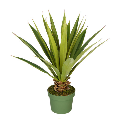 House of Silk Flowers Inc. Artificial Spike Yucca Plant
