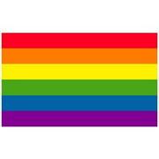Gay Rainbow Sisters Flag Sticker Gay Pride Flag