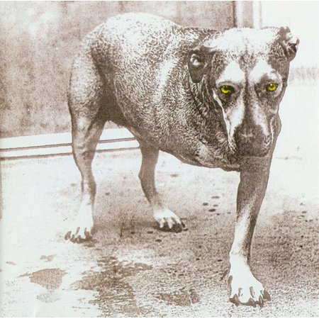 Alice in Chains (CD)