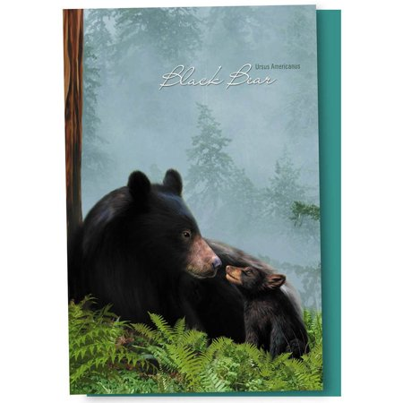- Tree-Free Greetings Black Bear Family Boxed ECOnotes Blank Note Cards-FS66883