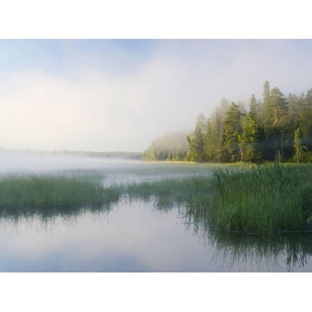 Lake Itaska, the Headwaters of the Mississippi River, Itaska State Park, Minnesota, USA Print Wall Art By Clint Farlinger