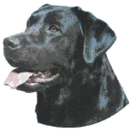 Tiger Cross Stitch Pattern - Black Labrador Retriever Dog Portrait Counted Cross Stitch Pattern