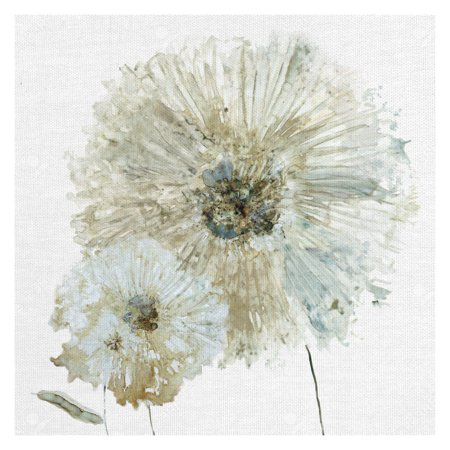 Masterpiece Art Gallery Ivory Spring I Flower By Carol Robinson Canvas Art Print 24