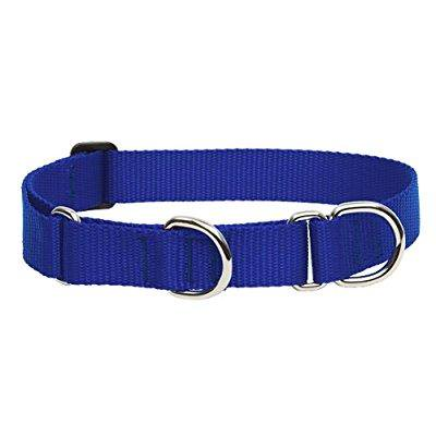 lupinepet basics 1 blue 15-22 martingale collar for medium and larger dogs