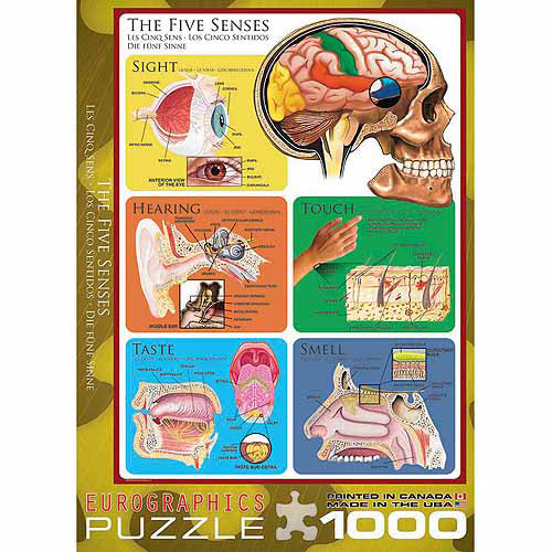 EuroGraphics The Five Senses 1000-Piece Puzzle