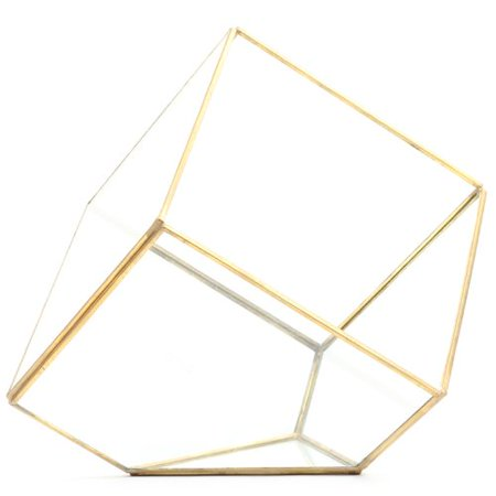 Koyal Wholesale Slanted Cube Geometric Table Glass Terrarium