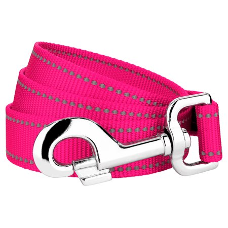 Country Brook Petz - 1 Inch Hot Pink Reflective Nylon Double Handle Dog Leash Hot Pink Dog Leash