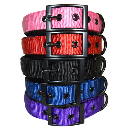 Best Padded Designer Dog and Puppy Collar (Designer Dog Collar And Leash)