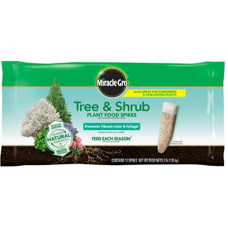 Miracle-Gro Tree & Shrub Plant Food Spikes, 12 Spikes