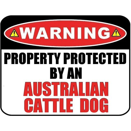 Warning Property Protected by an Australian Cattle Dog 9 inch x 11.5 inch Laminated Dog -
