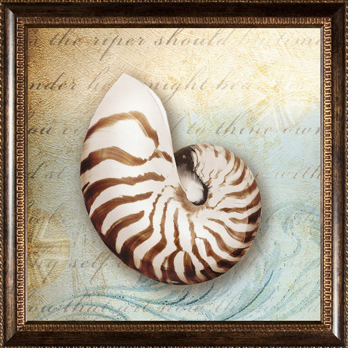 Pro Tour Memorabilia Seashell Framed Artwork