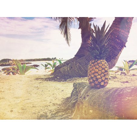 Canvas Print Appetizer Juice Crop Dessert Pineapple Fruit Stretched Canvas 10 x 14