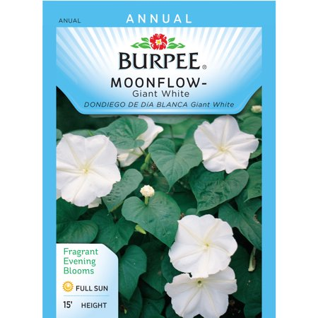 Burpee moonflower giant white seed packet walmart burpee moonflower giant white seed packet mightylinksfo