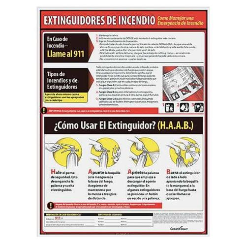 COMPLYRIGHT WR1131 Poster, Spanish, 18 in. H x 24 in. W