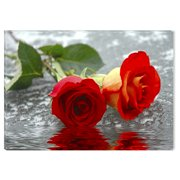 Startonight Canvas Wall Art Red Roses on the Water USA Design for Home Decor, Illuminated Flowers Painting Modern Canvas Artwork Framed Ready to Hang Medium 23.62 X 35.43 inch